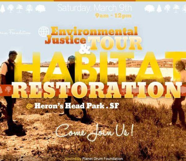 Habitat Restoration – Poster & Flyer